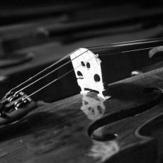 violin1-770x5081.jpg